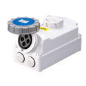 Interlocked Switched Sockets(Socket with Interlock Switch)(Socket with Switches and Mechanical Interlock) 32A 3P+E IP67 9H HTPZ1241-9